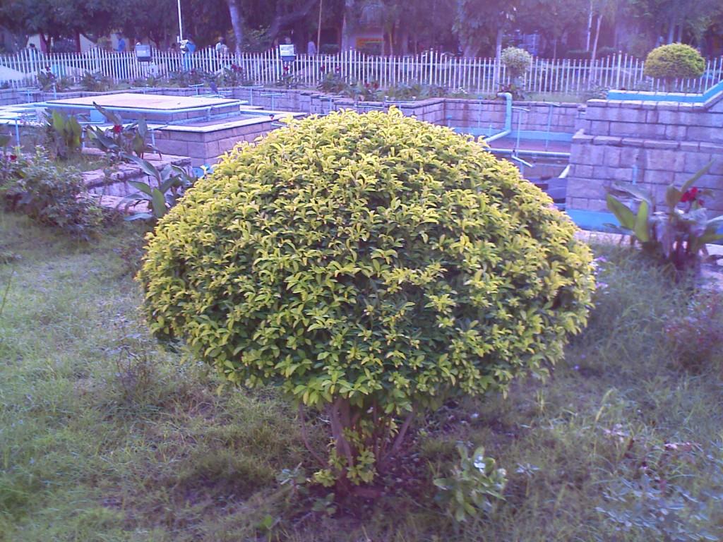 VOC Park Coimbatore Plant