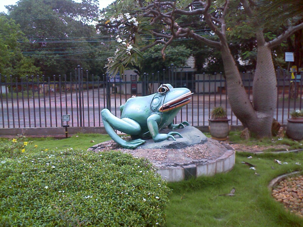 statue of frog made of stone in race course road coimbatore