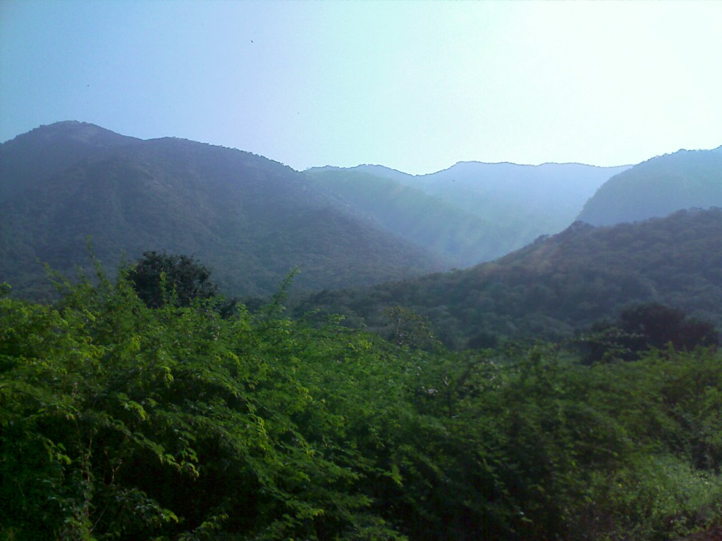 Balamalai, a hill in coimbatore for tourists