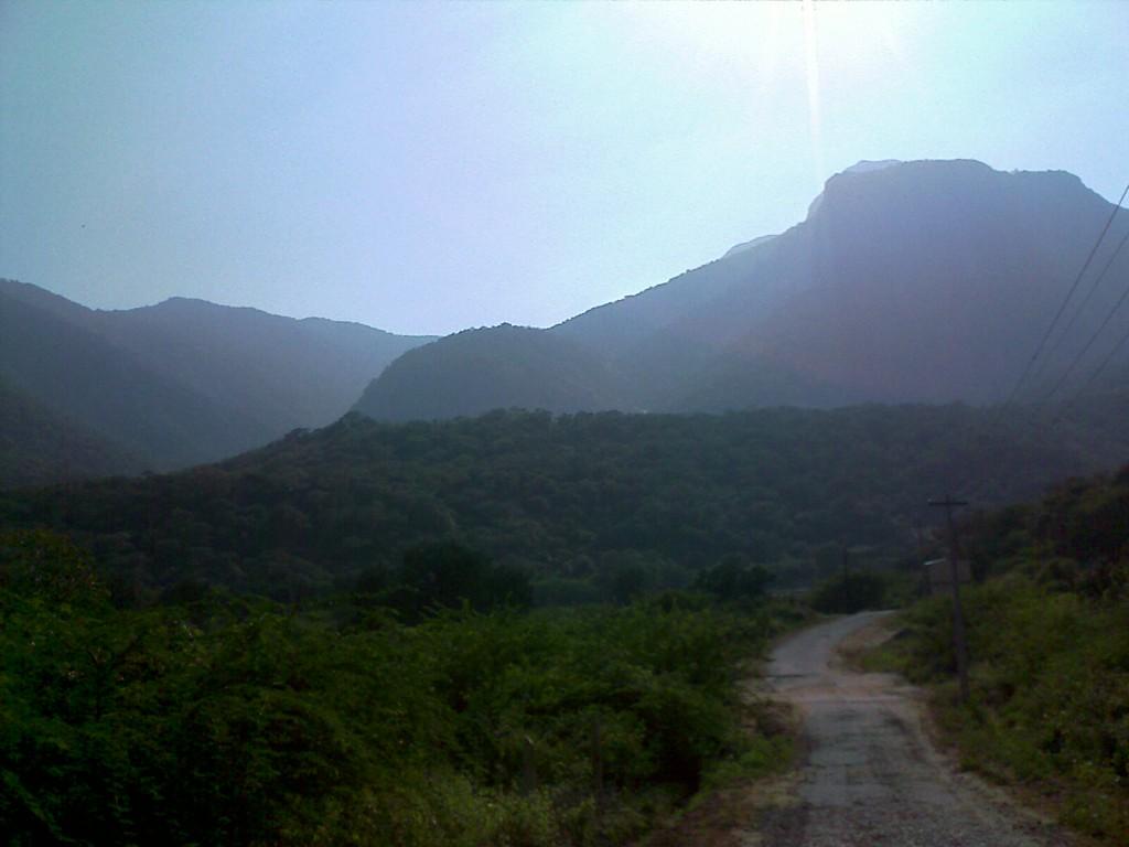 Palamalai Coimbatore tourist destination for the adventurous, mountain climbing in coimbatore