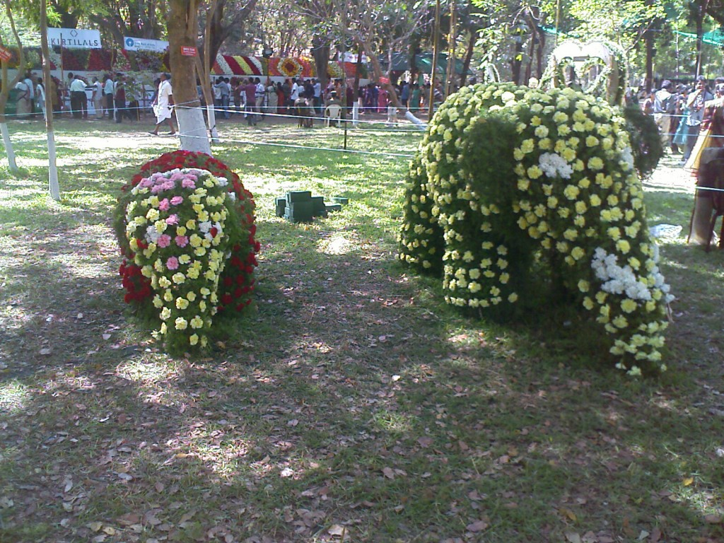 flower arrangement in the shape of elephants in covai flower show 2011 TNAU botanical gardens