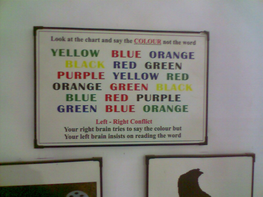 colour reading challenger exhibit kept in G D Naidu museum to explain the working of left and right brains