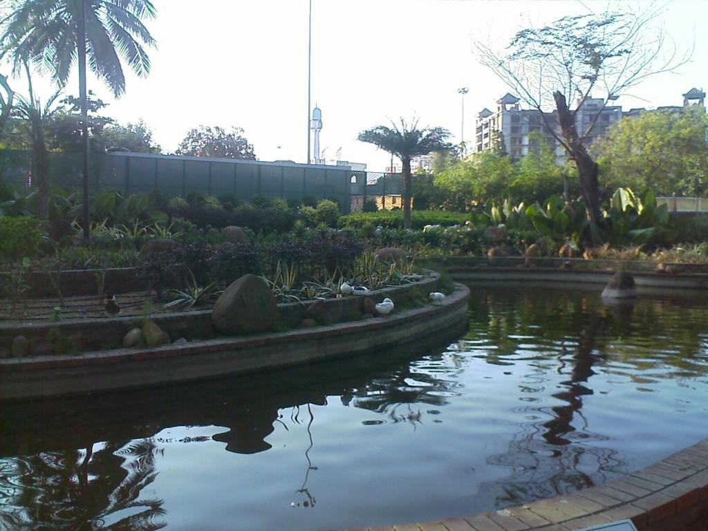 semmozhi poonga pond chennai