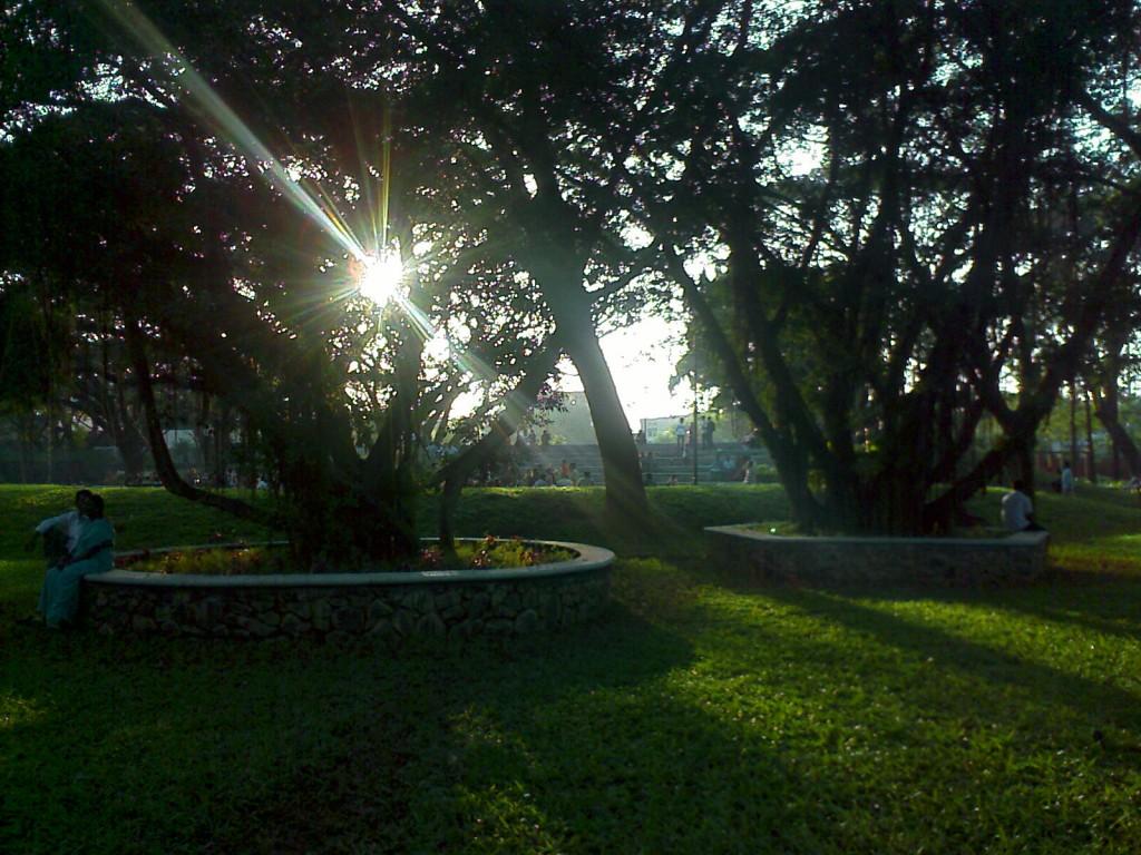 semmozhi poonga chennai trees
