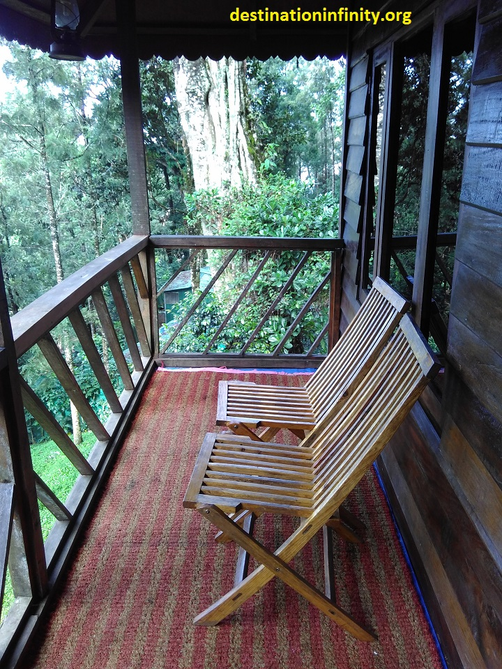 tree-house-at-munnar-kerala-india-7